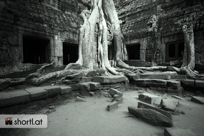 Der Ta Prohm-Tempel in Kambodscha