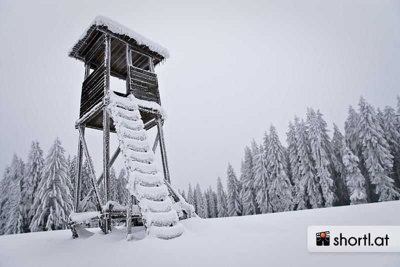 Winterlicher Hochstand im Waldviertel